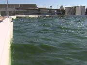 From Wastewater, Renewable Energy